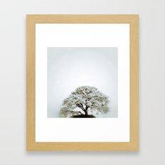 Tree #02 Framed Art Print