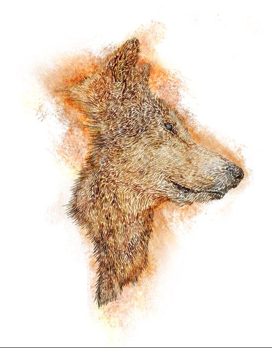 Wolf Flare Art Print