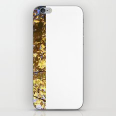 Alive With Fire Leaves iPhone & iPod Skin