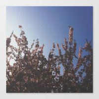 Ever Growing Canvas Print
