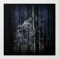 Late Fall In The Forest Canvas Print