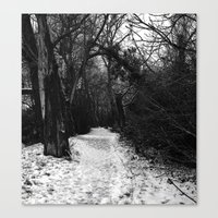 Winter in the forest Canvas Print