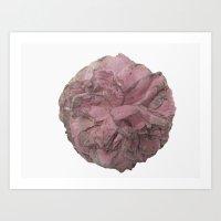 Full Camellia Pink Art Print