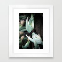 Minty Leaves Framed Art Print