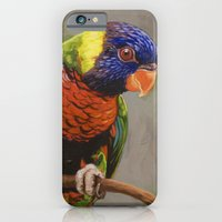 Rainbow Lorikeet iPhone 6 Slim Case