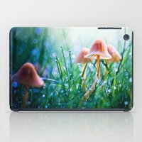 Fairytopia iPad Case