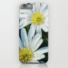daisies Slim Case iPhone 6s