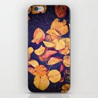 Fallen Yellow Leaves iPhone & iPod Skin