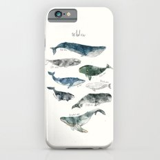 Whales Slim Case iPhone 6s