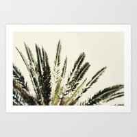 The Palms No. 2 Art Print