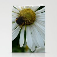 Flowers and Bees Stationery Cards