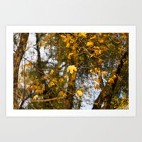 The Leaves Above - Yello… Art Print