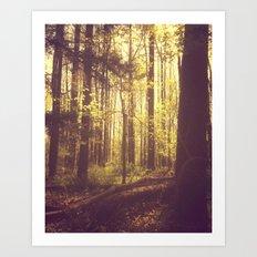She Experienced Heaven on Earth Among the Trees Art Print