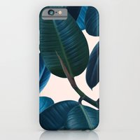 Ficus elastica 2 iPhone 6 Slim Case