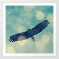 Bald Eagle Overhead Art Print