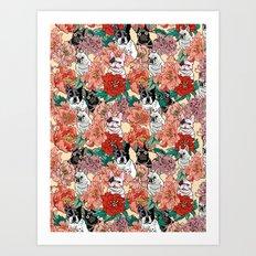 French Bullbloom Art Print