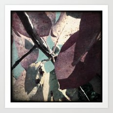 Beautiful Leaves Art Print