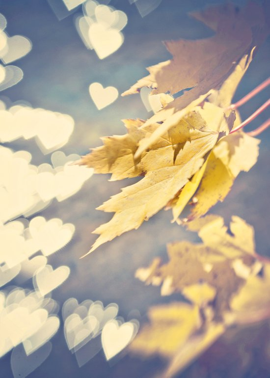 I Heart Autumn Art Print
