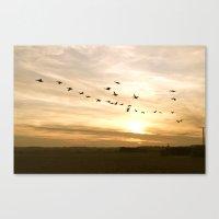 Geese Canvas Print