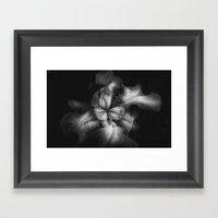 Black And White Iris - B… Framed Art Print