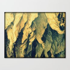 Tobacco leafs Canvas Print