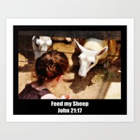 Feed My Sheep - Poster Art Print