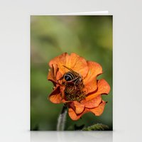 Bee Butt Stationery Cards