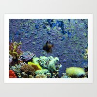 Beautifully Ugly Brown Fish Art Print