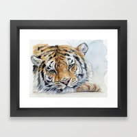 Resting Tiger Framed Art Print