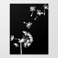 Dandelion 2 Drawing Canvas Print
