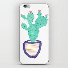 Cactus Illustration iPhone & iPod Skin