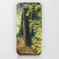 path iPhone 6 Slim Case