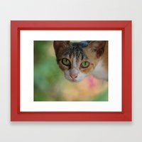 Kitty Framed Art Print