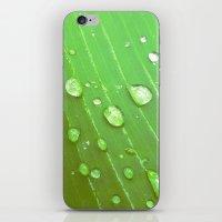 Jungle Drops. iPhone & iPod Skin