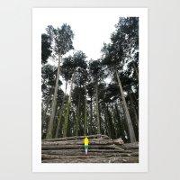 Through The Woods II Art Print