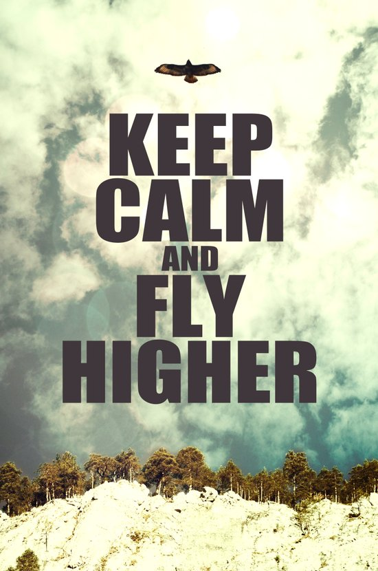 Keep Calm And Fly Higher Art Print