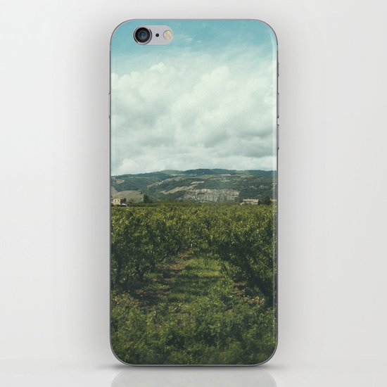 Vineyards, South of France iPhone & iPod Skin