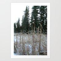 Falltime In Watervalley Art Print