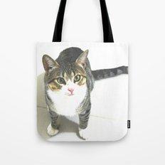 Miojo Cat. Tote Bag