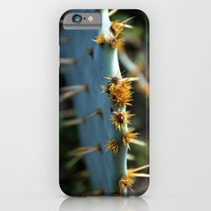 a south Texas cactus.  iPhone 6 Slim Case