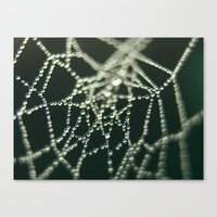 Water Beads Canvas Print