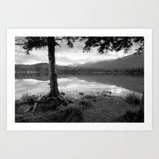 Beauvert Lake - Jasper, Alberta Art Print