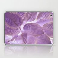 Lavender Glowing Hosta Laptop & iPad Skin