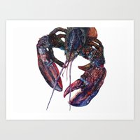 Maine Lobster Art - Watercolor Print Art Print