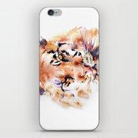 Tiger  Panthera . . .  iPhone & iPod Skin