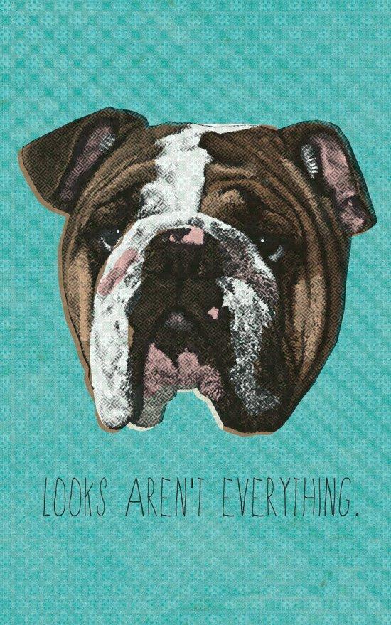 English Bulldog Print Canvas Print
