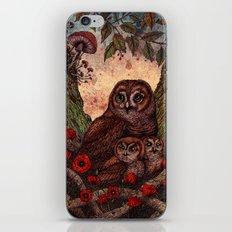 Tawny Owlets iPhone & iPod Skin