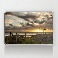 Lundy Island Laptop & iPad Skin