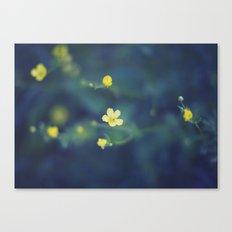 yellow wildflowers Canvas Print