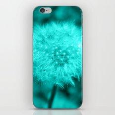 Sweet Dandelion In Turqu… iPhone & iPod Skin